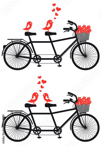 tandem bicycle with love birds, vector © beaubelle