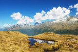 Scenery from Routeburn track