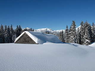 Hut in the snow, snow covered trees