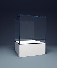 empty display case