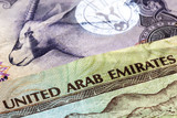 UAE Currency Closeup