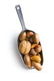 various nuts in scoop