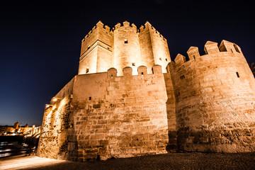 Views Calahorra Tower, the Roman in Cordoba, Spain