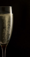Champagne in glass on black background