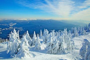 Winterlandschaft am grossen Arber, Bayerischer Wald