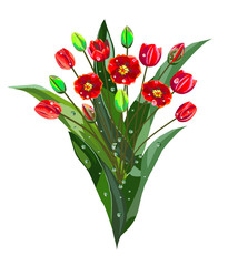 Bouquet of red tulips with dew drops