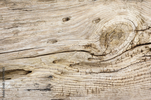 Driftwood Background Texture