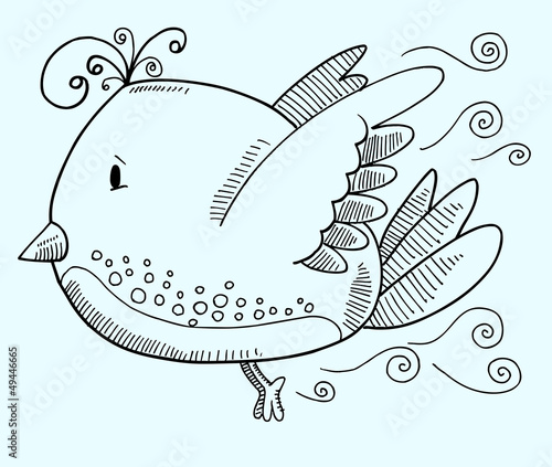 Doodle Bird Vector Illustration Art
