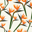Paradise bird flower pattern