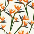 Paradise bird flower pattern
