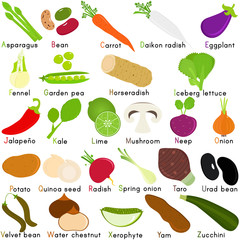 Vector Icons of Vegetable with Alphabet A to Z