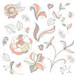Vector Collection of Decorative Design Elements