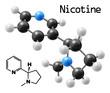 Постер, плакат: nicotine molecule