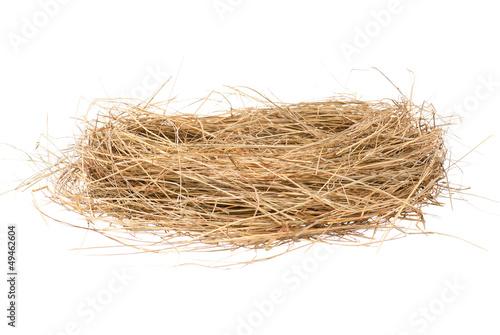 Birds nest - 49462604