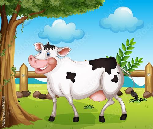 Foto op Canvas Boerderij A cow in the backyard