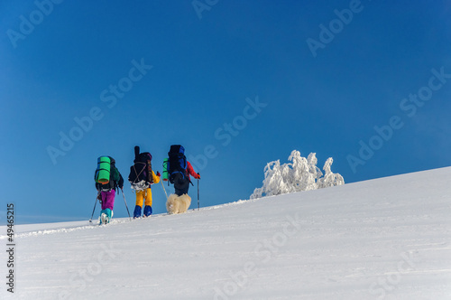 group of hikers with Sammy dog in winter mountains