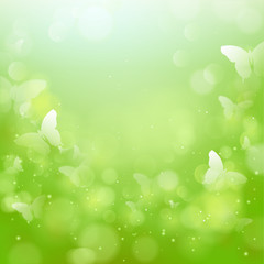 Frühlingshintergrund Schmetterlinge - Bokeh