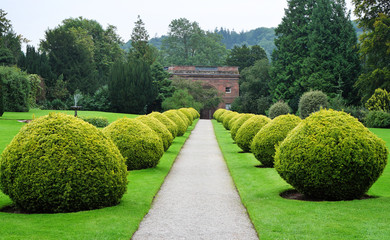 Path through a formal English Garden