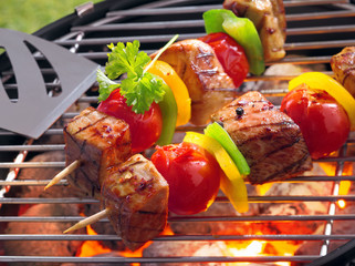 Barbeque with kebabs