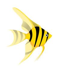 icon_tropical fish