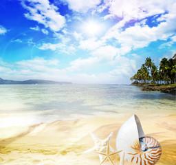 Genuss pur: Karibischer Traumstrand mit Nautilus