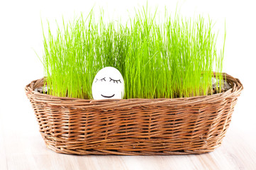 Funny smiling woman egg in  basket with grass. sun bath.