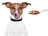 Fototapety dog pills diet
