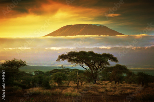 Canvas Overige Mount Kilimanjaro. Savanna in Amboseli, Kenya