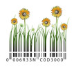 Sunflower barcode