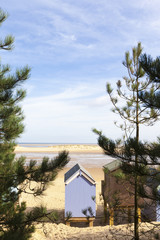 Beach hut and trees