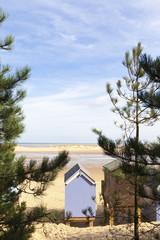 Beach hut and trees