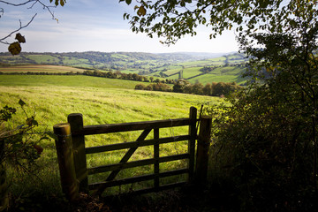 Gate onto Rolling British Countryside