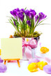 easter card with eggs and spring flowers