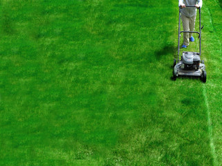 Mowing Lawn Grass