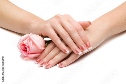 Women's hands with a rose