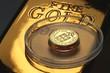 Goldescudo01