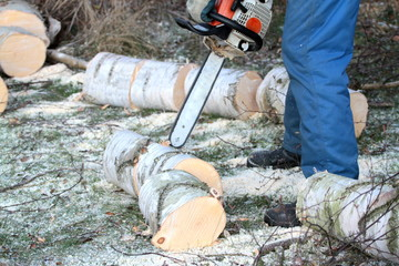 Tree cutting with chainsaw