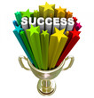 Success Trophy - A Winning Accomplishment