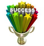 Success Trophy - A Winning Accomplishment poster