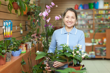 woman with  orchid at flower store