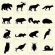 Forest animals' silhouettes