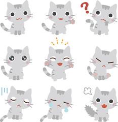 いろいろなポーズの猫