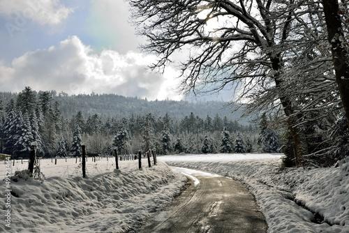 Chemin d'hiver