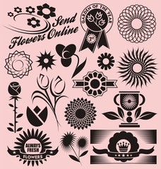 Floral collection of decorative vectors