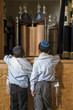 two boys standing in front of holy jewish scripts in a synagogue - 49533041