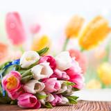 Tulpen vor Frühlingshintergrund