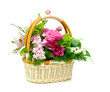 basket of flowers isolated on white background