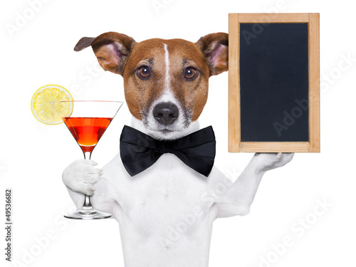 cocktail dog with blackboard