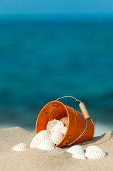 Muscheln sammeln am Strand, Urlaub, Ferien, Entspannung