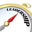 Leadership - Gold Compass Symbol of Leader Taking Charge